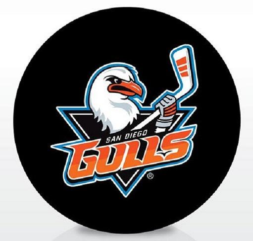 One Size Black Inglasco AHL Wilkes-Barre//Scranton Penguins Souvenir Pucksouvenir Puck